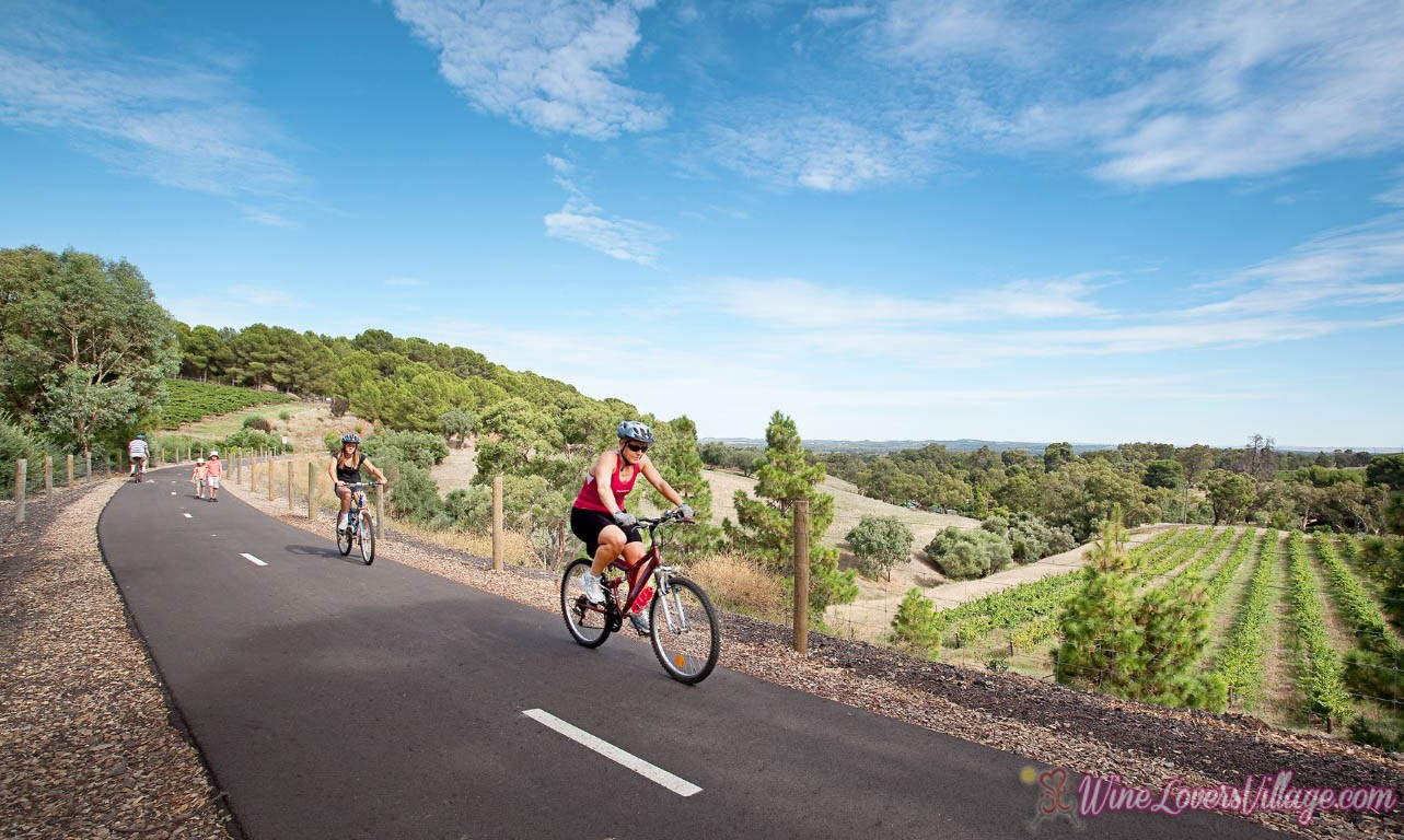 Cycling trails meet grape expectations in top wine region