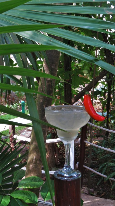 Serrano Chili Pepper Margarita - Occidental at Xcaret