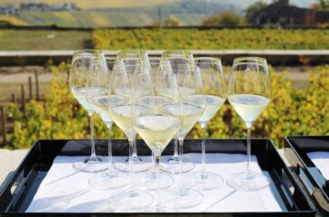 Take a virtual tour of the Champagne region of France and pour yourself of bubbly. Photo credit: Osmany Tavares / CIVC